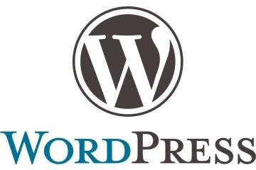 WordPress-gebruiksvriendelijk-CMS